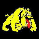 Jay Boarder Wars logo