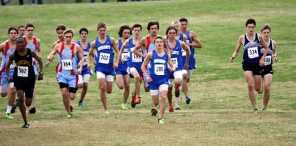 Hornets finish 6th at State meet