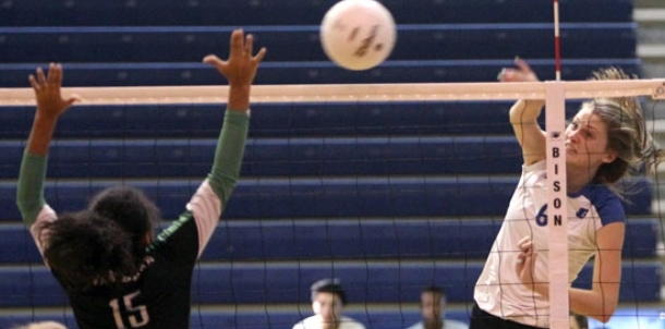 Lady Hornets make quick work of Pointerettes