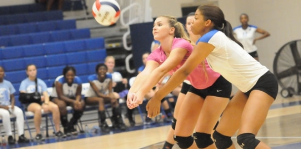 After strong Spikefest, Lady Hornets tripped up by Lady Panthers