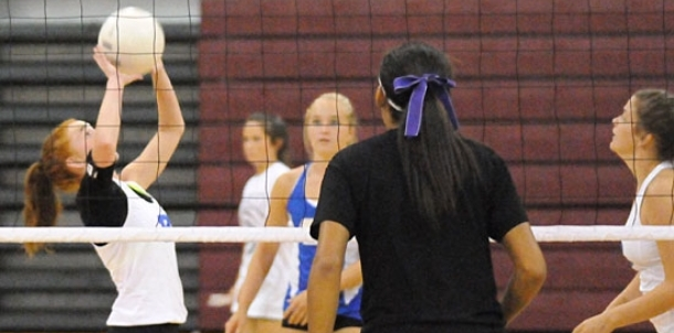 Lady Hornets begin 2014 campaign at Benton benefit jamboree Thursday