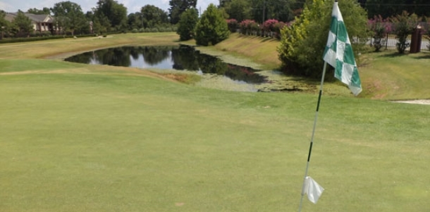 BHS golfers start 2016 season Monday at El Dorado