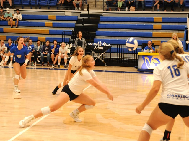 Harrison volleyball rebounds against SS