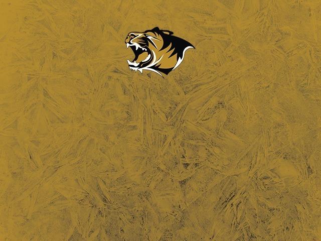 Tiger Stadium - RESERVED SEATING
