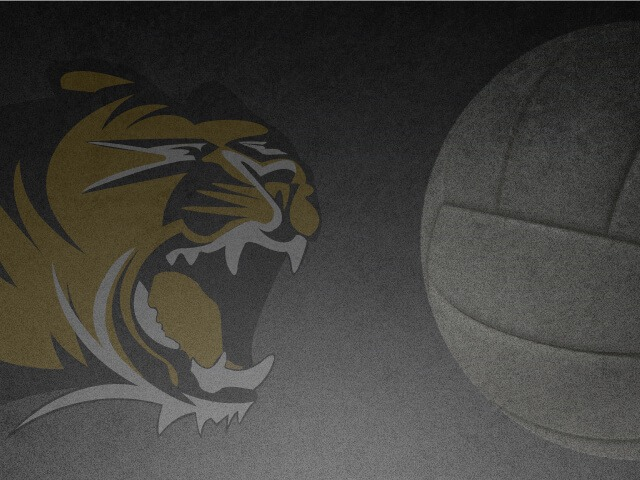 Image for Tiger Volleyball
