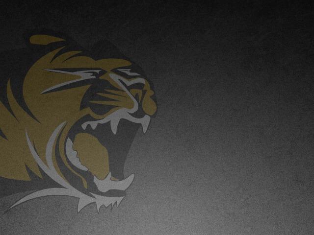 Next Level Tigers