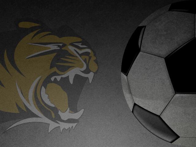 PREP SOCCER: Gonzales' two goals lift Bentonville to win