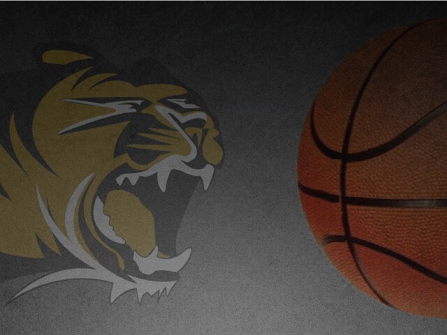 Wolverines, Tigers reach division finals in Neosho tourney