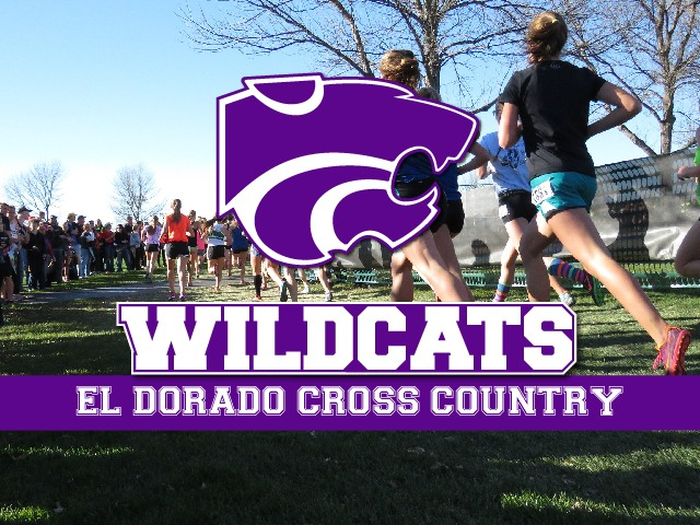 Image for Wildcats finish third at SAU meet