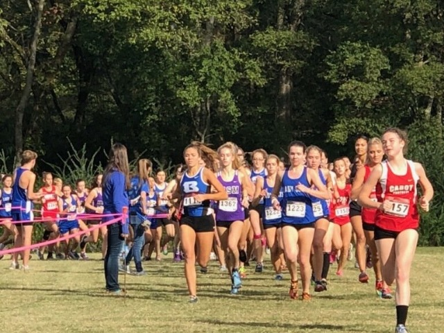 Lady Cats Place Third in Conference Meet
