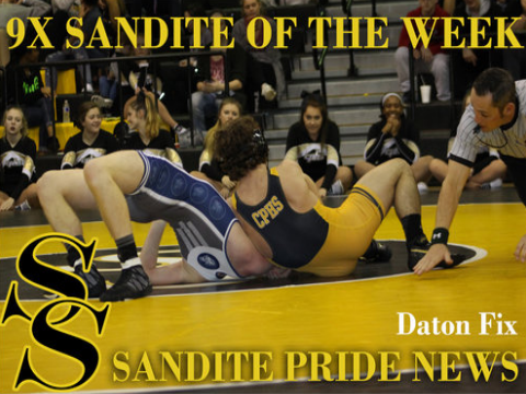 9x Sandite of the Week