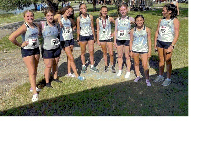 Image for Jv Girls ran at the  Running with the wolverines invitational