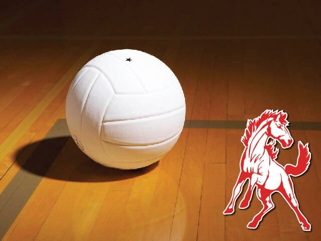 Lady Stangs fall in final district home match to 1st-place Snyder