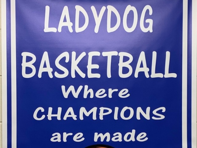 Ladydogs & Ladypups Win Benefit Game against Stuttgart