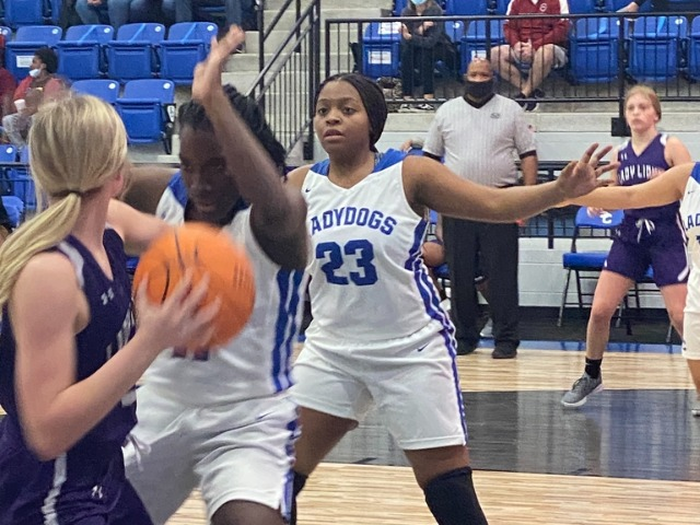 Ladydogs Win Big Against Hamburg, Bulldogs Fall at Home