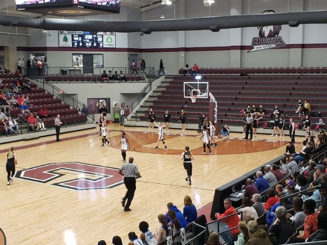 Ladydogs Defeat Bauxite in 1st Round of Regionals to Clinch State Tournament Berth