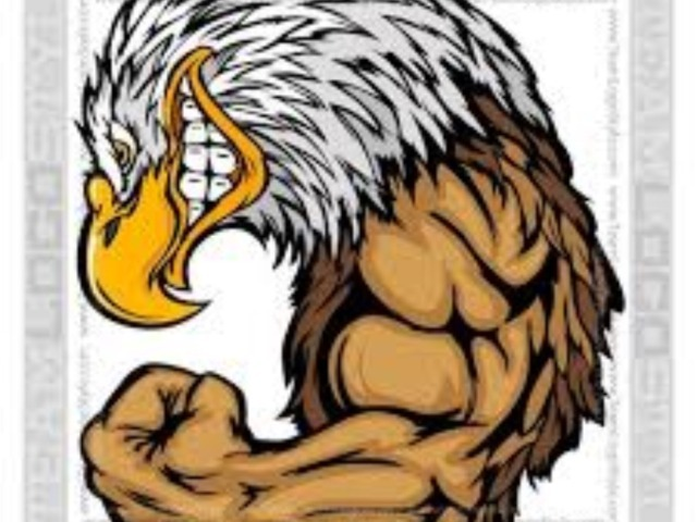 Screaming Eagle Spring Football