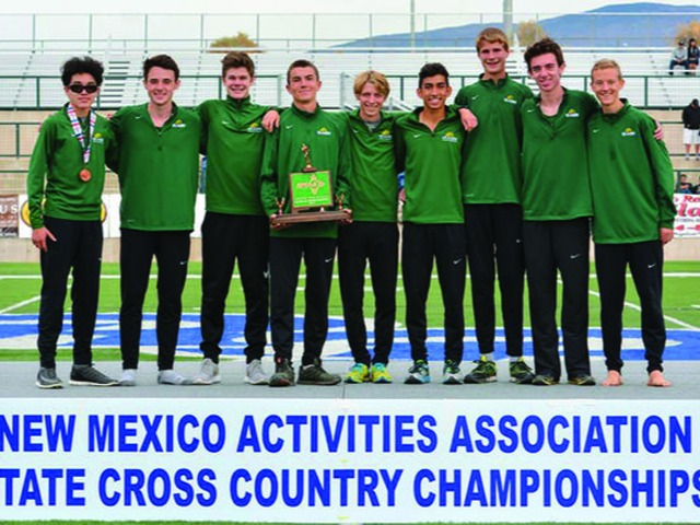 2017 proves to be successful for LAHS cross country