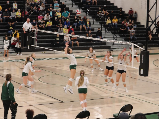 Waxahachie Varsity Volleyball Falls to District Leader Mansfield