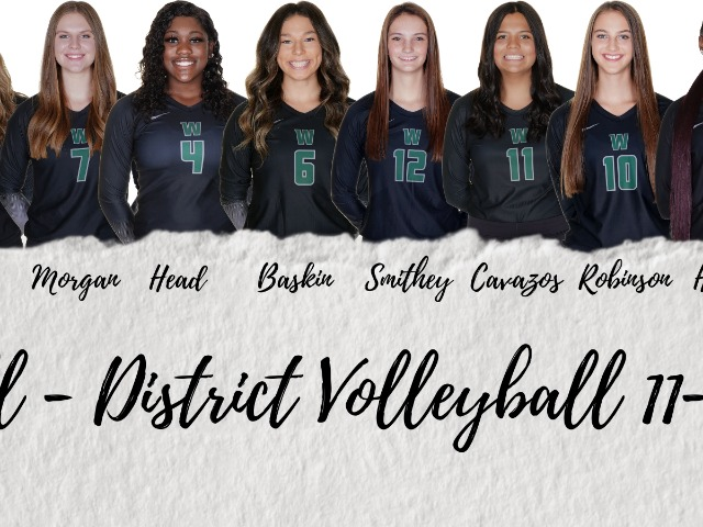 Volleyball All District & Academic All District Honors