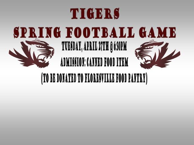 GO TIGERS GO!!