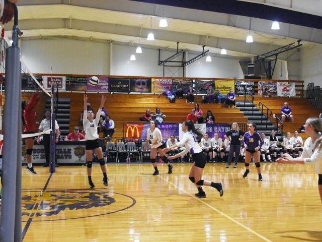 No Rest For Lady Cats; Play Again At 5 Today
