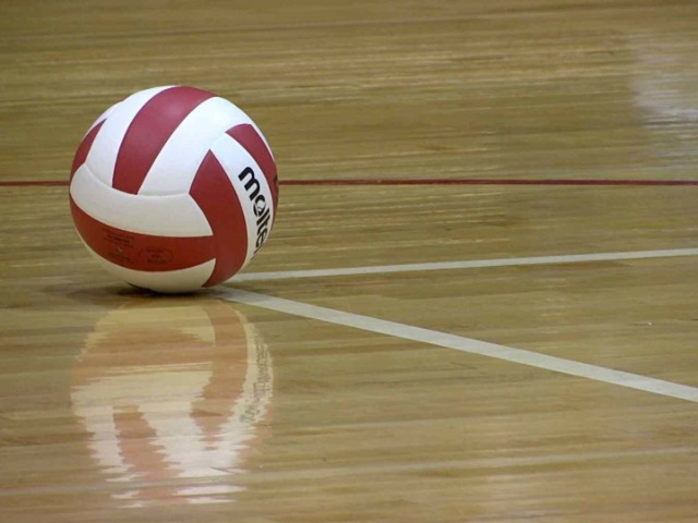 Wildcat Volleyball Tryouts & Pre-Tryout Clinics