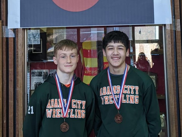 Two Wrestlers Place at JV State Championships