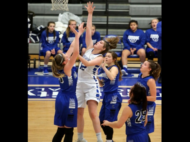 Image for Fruita girls top Dinos in close game to remain undefeated