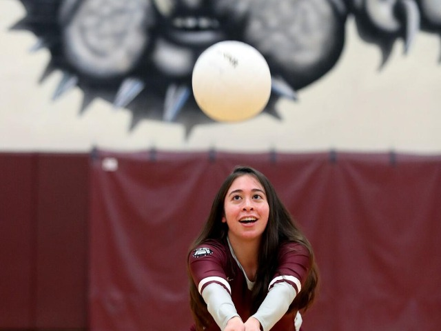 Image for Volleyball, boys soccer teams prepare for season with little turnaround