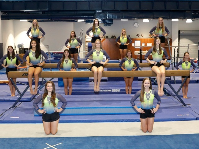 Lady Scots Gymnastics – District Champions