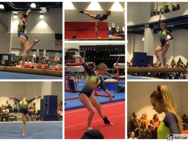 Gymnastics celebrates season