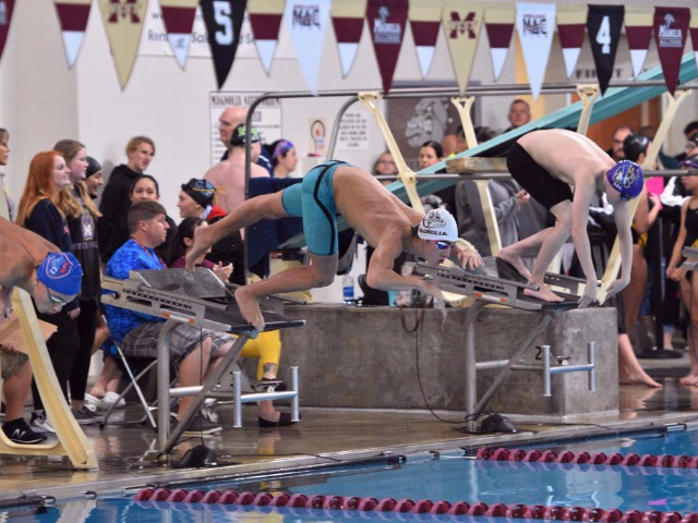 Image for Twelve Bulldogs Earn Swim & Dive All-State Honors