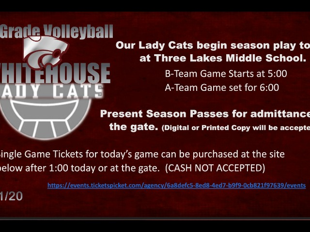 Image for LadyCat JH Volleyball Season Begins Today!