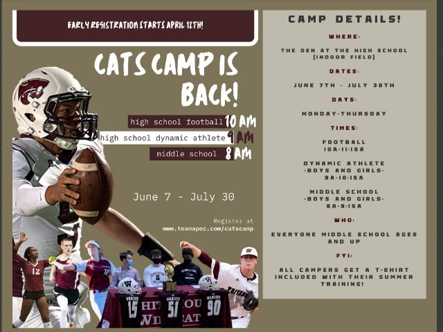 Image for Cat's Camp 2021