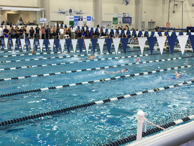Image for Independence Girls Win District Swim Title