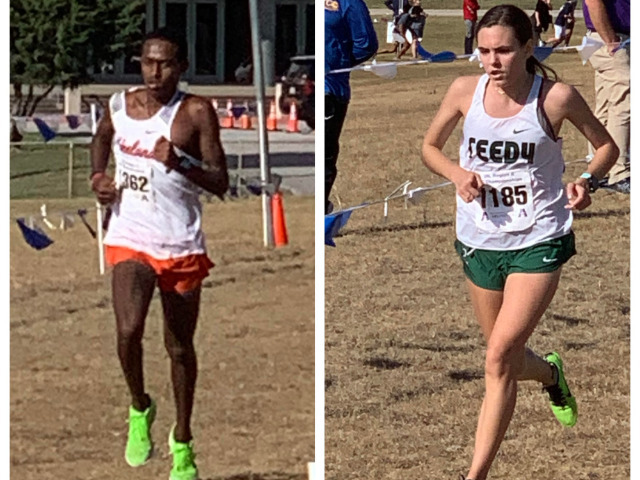 FISD Runners Make Strong Showing at Cross Country Region Meet