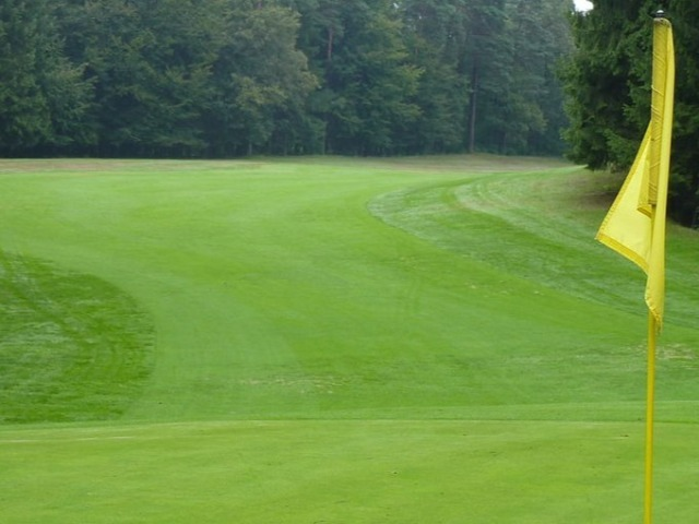 Memorial Boys Golfers Win District 9-5A Title