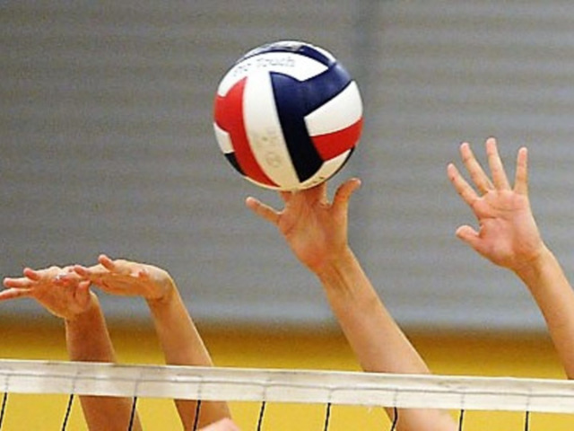 Image for All-District Volleyball Players Honored