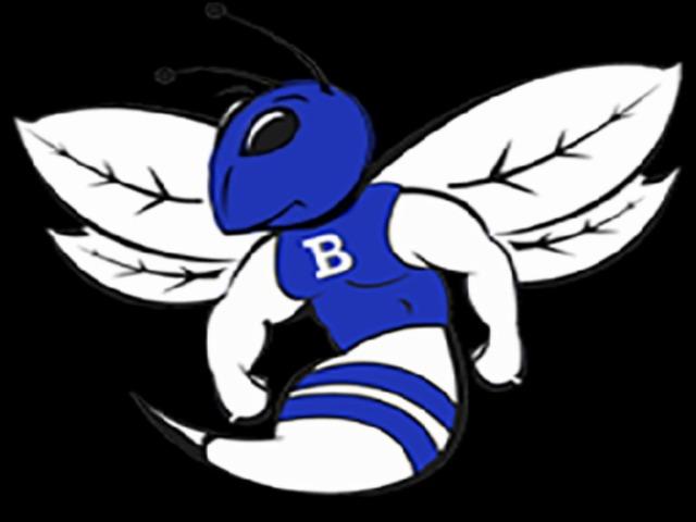 Image result for bryant hornets