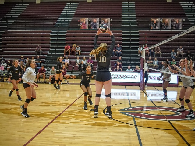 Image for Collierville Volleyball Dances On To Elite Eight at State Tournament