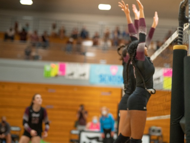 Collierville Volleyball Defeats Desoto Central 3-0