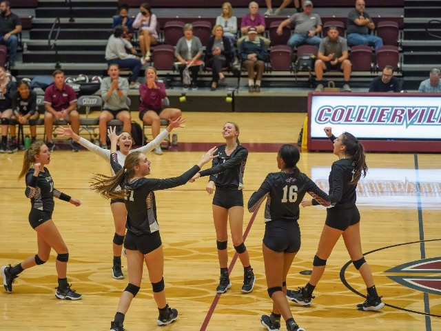 Image for Collierville Topples Houston In Three Sets To Claim Region 8 Title