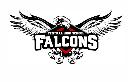 Central-Tuscaloosa logo