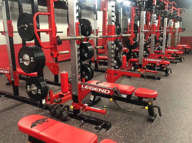 Panther Weight Benches 1