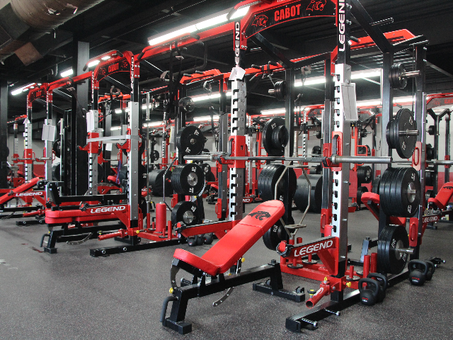 Panther Weight Benches 0