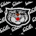 LR Parkview logo