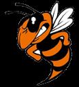 Booker T Washington logo 16