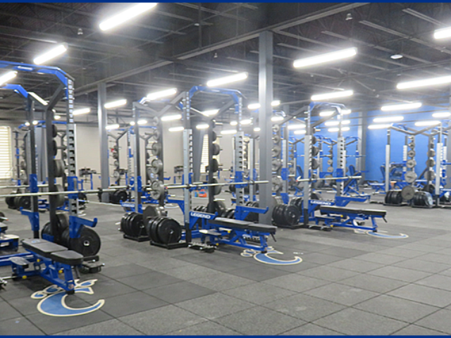 Wampus Cat Indoor Facility 2
