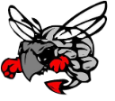 Hilldale Graphic